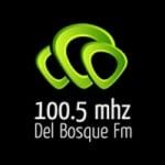 Logo da emissora Radio Del Bosque 100.5 FM