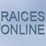 Logo da emissora Radio Raices 95.1 FM