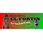 Logo da emissora Radio El Fortin 91.9 FM