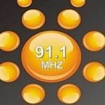 Logo da emissora Radio del Sol 91.1 FM