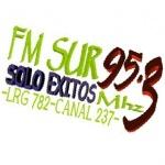 Logo da emissora Radio Sur Cutral Co 95.3 FM