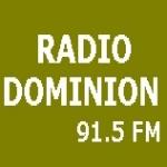 Logo da emissora Radio Dominion 91.5 FM
