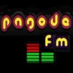 Logo da emissora Pagode FM