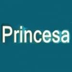 Logo da emissora R�dio Princesa dos Basti�es 104.9 FM