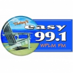 Logo da emissora Radio WPLM Easy 99.1 FM