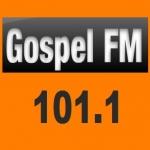 Logo da emissora Rádio Gospel 101.1 FM