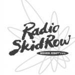 Logo da emissora Radio Skid Row 88.9 FM
