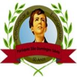 Logo da emissora Rádio Web São Domingos Sávio