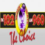 Logo da emissora WAVR 102.1 FM