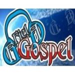 Logo da emissora Web Rádio Fiel Gospel