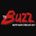 Logo da emissora WHHZ 100.5 FM The Buzz