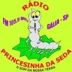 Logo da emissora Princesinha da Seda FM 105.9