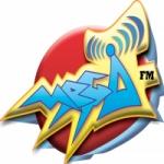 Logo da emissora Mega FM