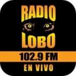 Logo da emissora Radio KIWI 102.9 FM