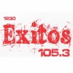 Logo da emissora Radio WNEZ 105.3 FM