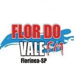 Logo da emissora R�dio Flor do Vale 87.9 FM