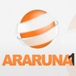 Logo da emissora Rádio Araruna 1