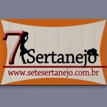 Logo da emissora Sete Sertanejo