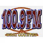 Logo da emissora Radio WAAI Country 100.9 FM