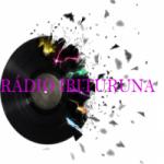 Logo da emissora Rádio Ibituruna