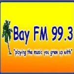 Logo da emissora 2N38 99.3 FM Bay