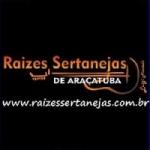 Logo da emissora R�dio Ra�zes Sertanejas de Ara�atuba