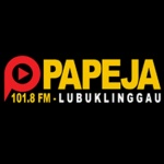 Logo da emissora Papeja 101.8 FM