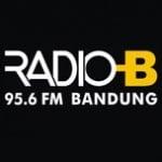 Logo da emissora Radio B 95.6 FM