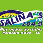 Logo da emissora Rádio Salinas 104.9 FM
