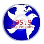 Logo da emissora R�dio Peju�ara 105.9  FM
