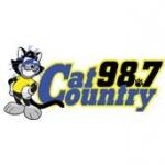 Logo da emissora Radio WYCT 98.7 FM