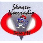 Logo da emissora Tiger FM 106.4 FM