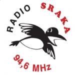 Logo da emissora Radio Sraka 94.6 FM