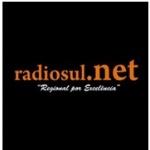 Logo da emissora R�dioSul.net