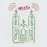 Logo da emissora Radio Alternativa FM 105.9