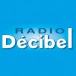 Logo da emissora Décibel 95.7 FM
