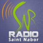 Logo da emissora Radio Saint Nabor 103.2 FM