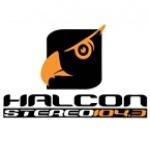 Logo da emissora Radio Halcon Stereo 104.3 FM