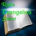Logo da emissora Rádio Evangélica Sidnei