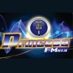 Logo da emissora Rádio Princesa Isabel 87.9 FM