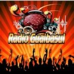 Logo da emissora Radio Guaibasul