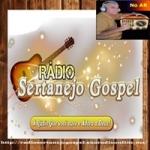 Logo da emissora Web Rádio Sertanejo Gospel