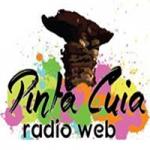 Logo da emissora Pinta Cuia Radio Web