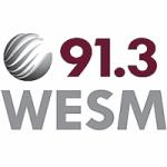 Logo da emissora Radio WESM 91.3 FM