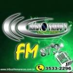 Logo da emissora Rádio Tribus 87.9 FM