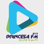 Logo da emissora R�dio Princesa 87.5 FM