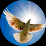 Logo da emissora Rádio Paz e Amor