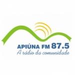 Logo da emissora Rádio Apiúna 87.5 FM