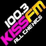 Logo da emissora WYDL 100.7 FM
