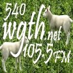 Logo da emissora WGTH 540 AM